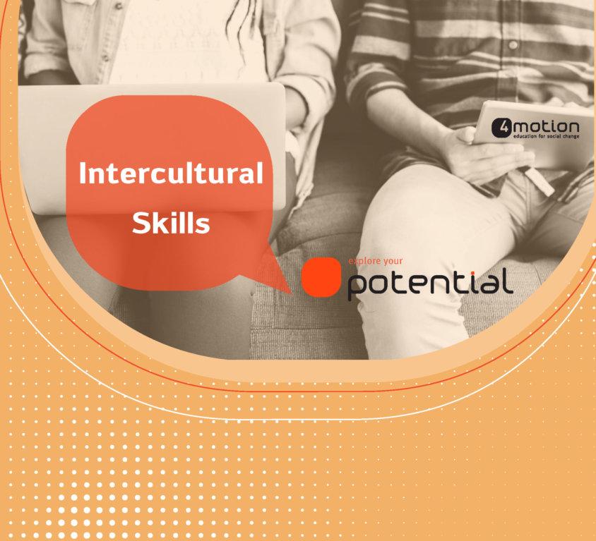 Formation Intercultural skills